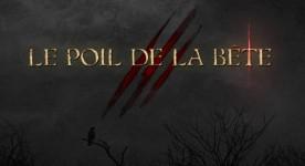Bannière pub pour le film québécois Le poil de la bête