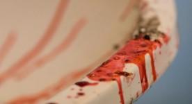 Image Un évier sanglant et des vers de chair... Thanatomorphose de Falardeau!