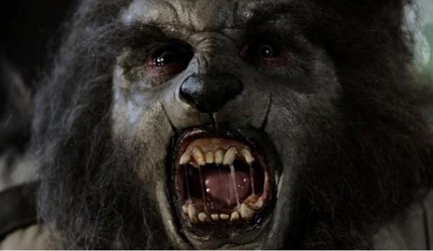Extrait du film Wolfcop de Lowell Dean