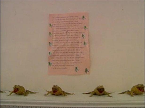 Image extraite du film La réception - On y voit de petites grenouilles sur le manteau d'une cheminée et une sombre prophétie collée au mur