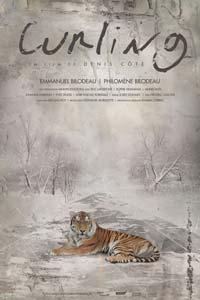 Affiche provisoire du film Curling de Denis Côté