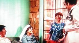Les aventures d'une jeune veuve (Roger Fournier 1974)