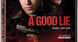 Pochette DVD du film A Good Lie (Histoire à faire peur), un thriller de Shawn Linden.